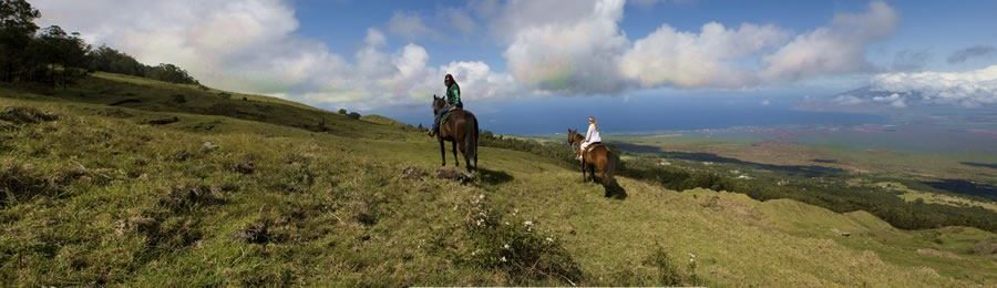 Thompson Ranch in Maui